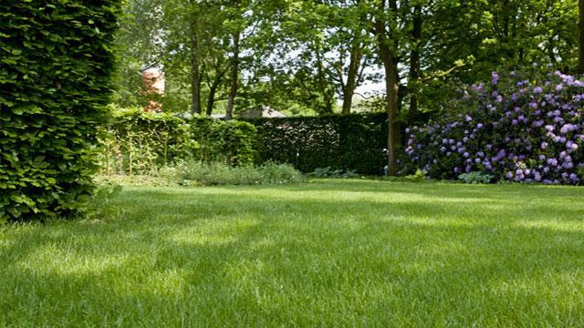 dcm calcaire vert pour le chaulage des gazons et jardins dcm. Black Bedroom Furniture Sets. Home Design Ideas